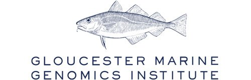 logo for Gloucester Marine Genomics Institute